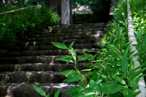 ゲッターズ飯田 愛宕神社