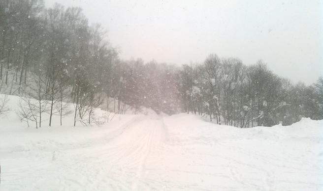 snowboad-dvd