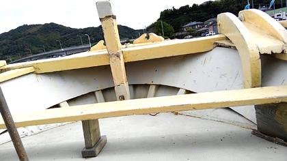 イルカウォッチング 船首の座席