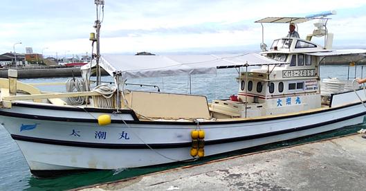 イルカウォッチングの船
