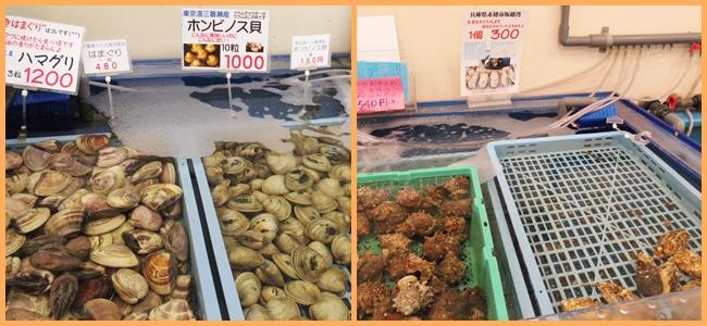 活き活き亭 海鮮網焼き ハマグリ ホンビノス貝