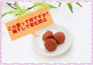 【この差って何ですか 梅干し】脂肪燃焼効果の調味料「梅びしお」老化防止にオススメの梅は?