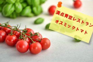 【満点青空レストラン オスミックトマトのお取り寄せ先は?】宮川大輔絶賛のトマトフォンデュ&パンナコッタ