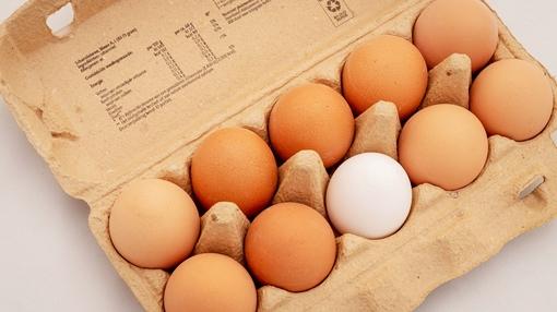 金スマ 医者が教える食事術2 卵