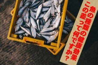 【この差って何ですか 】サバ缶まるごとチーズだし巻き卵レシピ!魚で美肌効果も!?