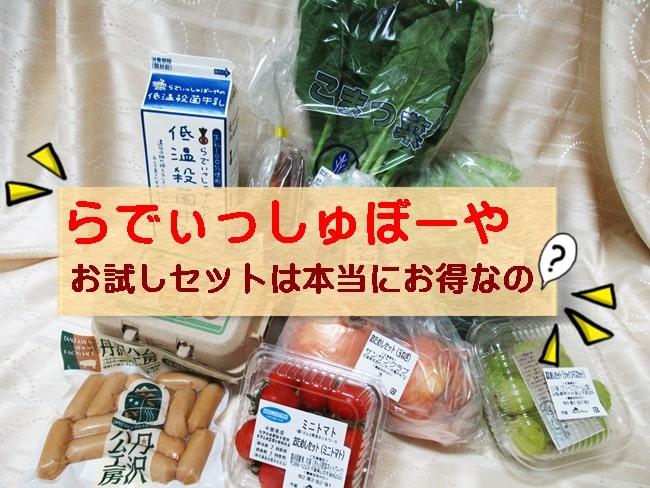 らでぃっしゅぼーや お試しセット 内容 口コミ 新鮮野菜 お得