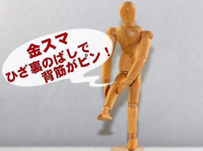 金スマ ひざ裏のばし 背筋がピン 3分 ストレッチ 腰痛改善 やり方