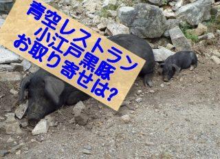 【青空レストラン 小江戸黒豚のお取り寄せは?】松本人志と10周年記念で満点うまーーい