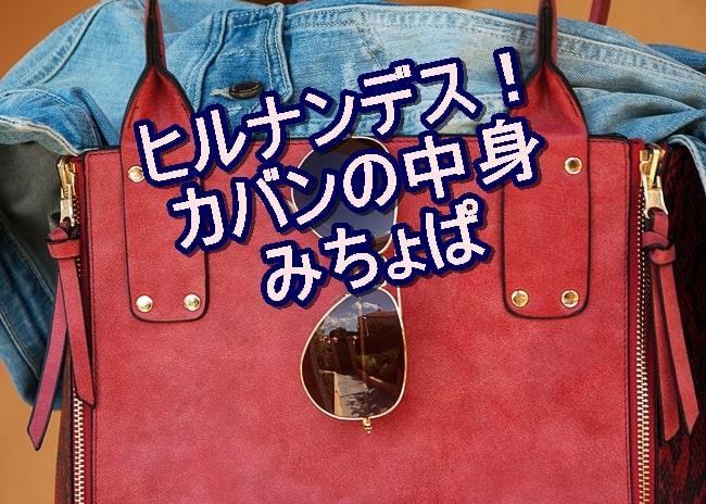 ヒルナンデス カバンの中身 みちょぱ 化粧品 今日 平野ノラ